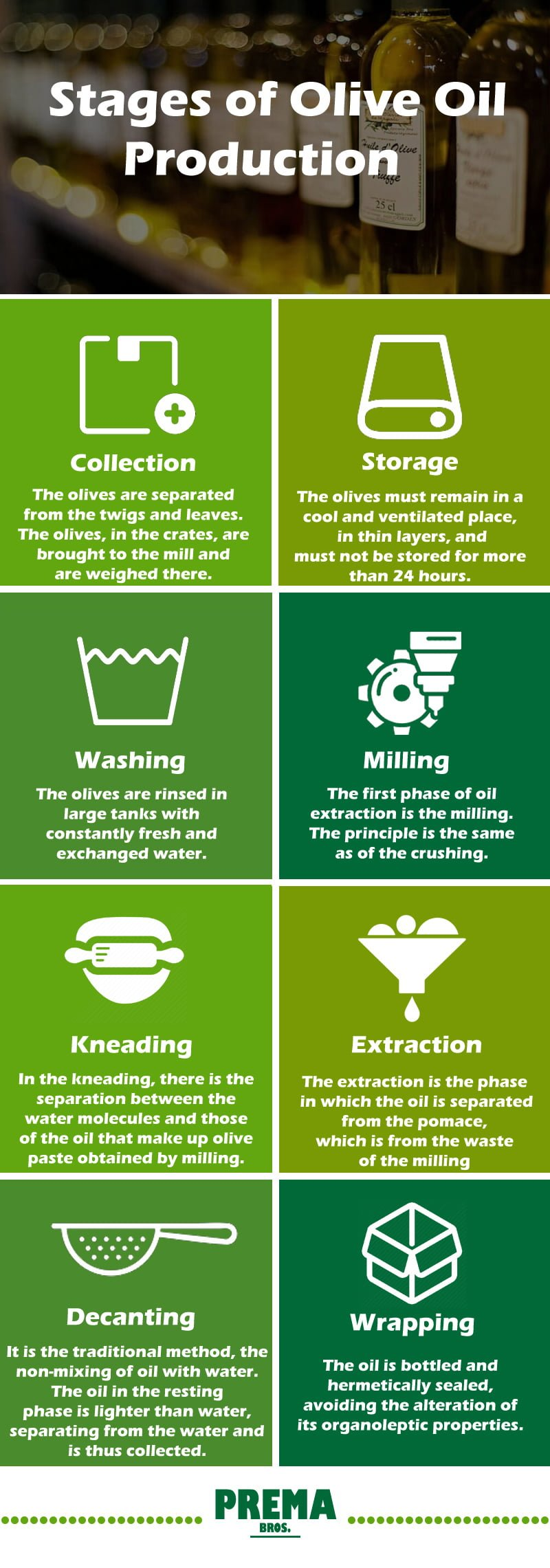 Stages of olive oil production